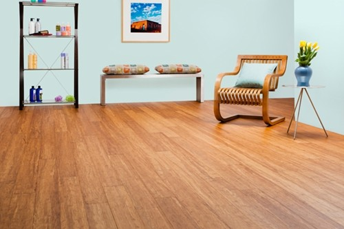 Bamboo flooring for your nursery