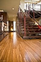 plyboo neopolian, bamboo flooring, green building materials