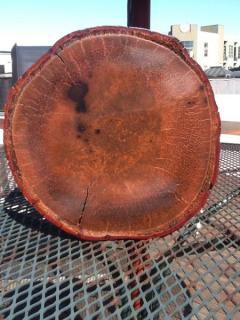 Coconut Palm Tree Wood Eco Material 4